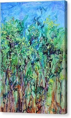 Whirlwoods Canvas Print by Regina Valluzzi
