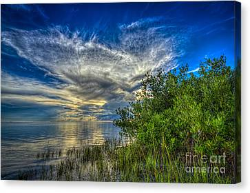 Whisper Wind Canvas Print by Marvin Spates