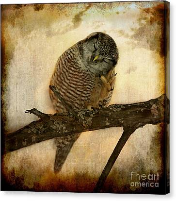 Whispered In The Sounds Of Silence Canvas Print by Heather King