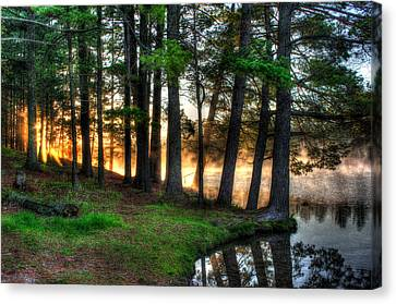Whispering Pines 2 Canvas Print