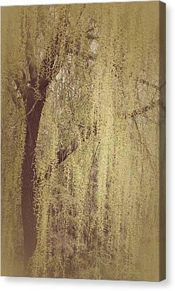 Whispering Tree Canvas Print