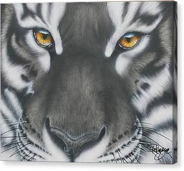 White And Black Tiger Canvas Print