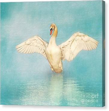 Hannes Cmarits Canvas Print - White Angel by Hannes Cmarits