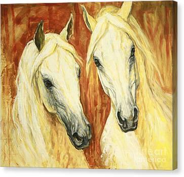 White Arabian Horses Canvas Print by Silvana Gabudean Dobre