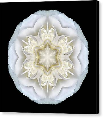 White Begonia II Flower Mandala Canvas Print