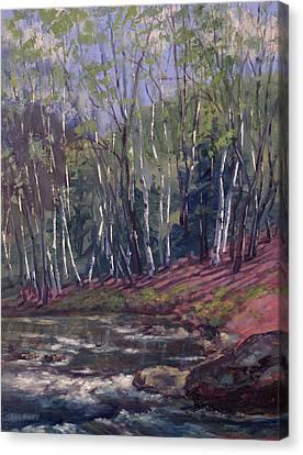 White Birches On Otter Brook Canvas Print