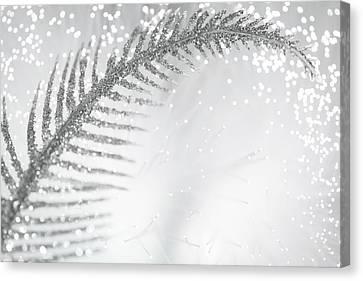 White Bird Canvas Print by Dazzle Zazz