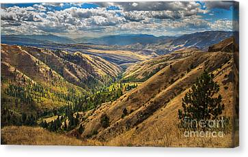 White Bird Hill View Canvas Print by Robert Bales