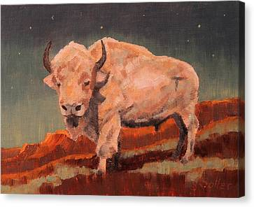 White Buffalo Nocturne Canvas Print