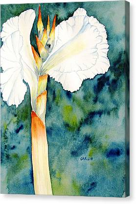White Canna Flower Canvas Print by Carlin Blahnik