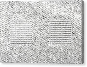 White Carpet Canvas Print by Tom Gowanlock
