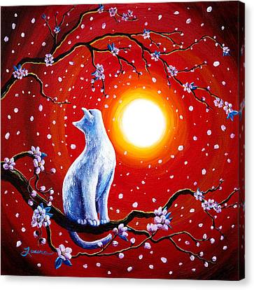 White Cat In Bright Sunset Canvas Print by Laura Iverson