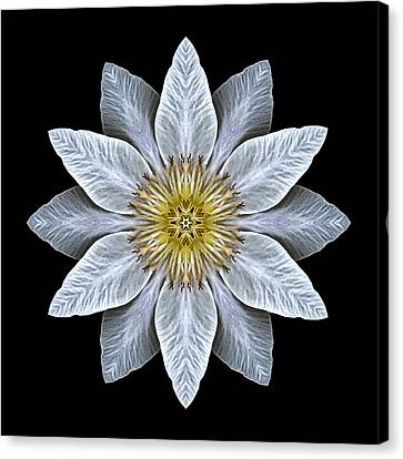 White Clematis Flower Mandala Canvas Print