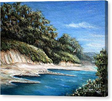 White Cliffs Canvas Print by Danuta Bennett