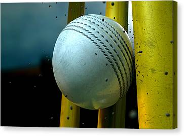 White Cricket Ball And Wickets Canvas Print by Allan Swart