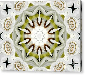 Canvas Print featuring the photograph White Daisies Kaleidoscope by Rose Santuci-Sofranko