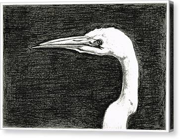 White Egret Art - The Great One - By Sharon Cummings Canvas Print