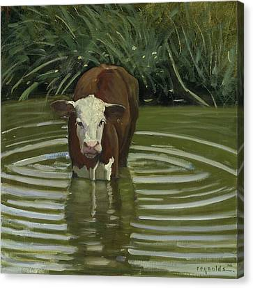 Canvas Print featuring the painting White Face Herford In The Pond by John Reynolds