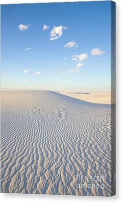 White Gypsum Dune  Canvas Print