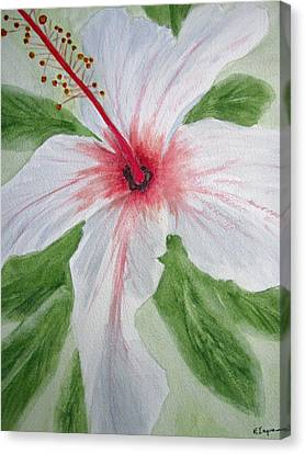 White Hibiscus Flower Canvas Print