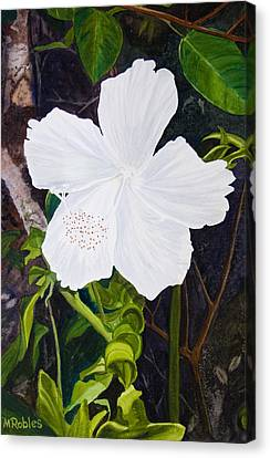 White Hibiscus Canvas Print by Mike Robles