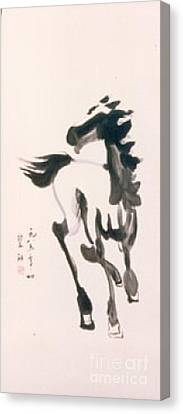 Canvas Print featuring the painting White Horse  by Fereshteh Stoecklein