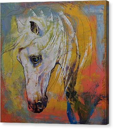 White Horse Canvas Print by Michael Creese