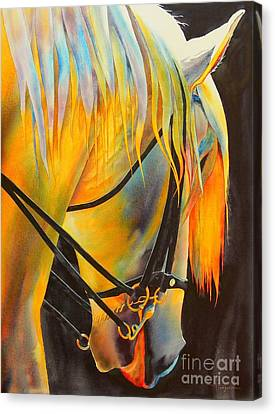 White Horse Canvas Print by Robert Hooper