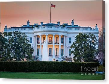 D.c Canvas Print - White House by Inge Johnsson