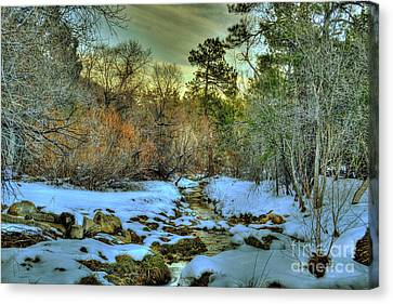 White Icing Snowy Scene In Prescott Arizona Canvas Print by K D Graves