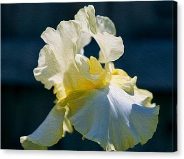 White Iris With Yellow Canvas Print by Omaste Witkowski