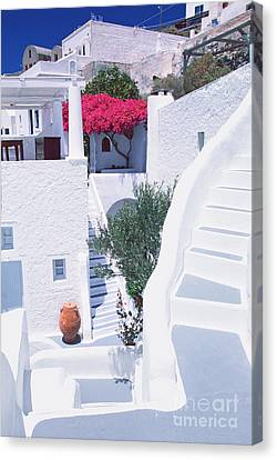 White Labyrinth Canvas Print by Aiolos Greek Collections