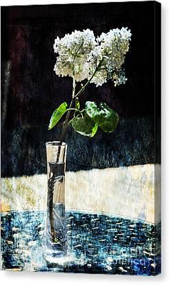 White Lilacs Canvas Print by Randi Grace Nilsberg