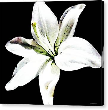 White Lily By Sharon Cummings Canvas Print by William Patrick