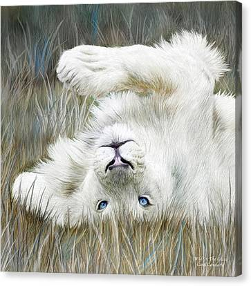 White Lion - Wild In The Grass Sq Canvas Print by Carol Cavalaris