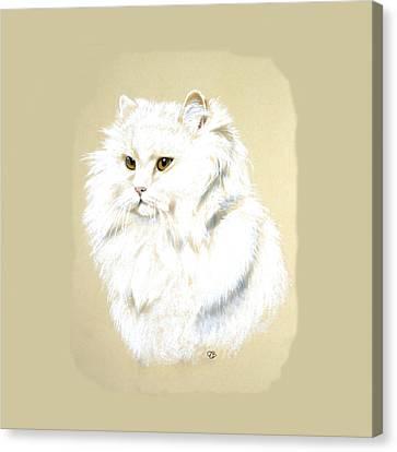 White Long Hair Cat Canvas Print by Jeanie Beline