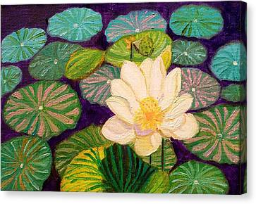 White Lotus Flower Canvas Print