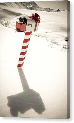 White Mailbox Decorated For Christmas Canvas Print by Kevin Smith
