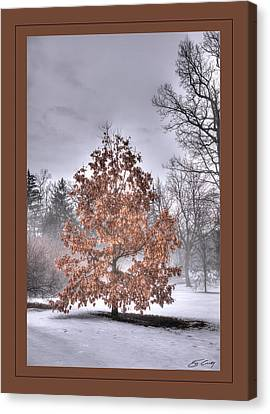Canvas Print featuring the digital art White Oak In Fog  Framed by Ed Cilley
