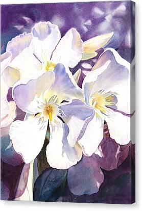 Celebration Canvas Print - White Oleander by Irina Sztukowski