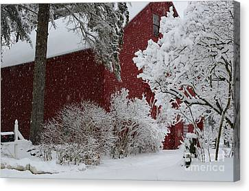 White On Red Canvas Print
