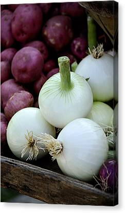 White Onions And Red Potatoes Canvas Print by Julie Palencia