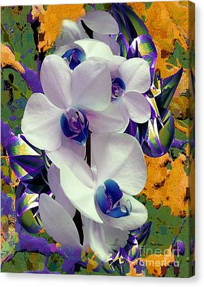 White Orchids With A Touch Of Purple Canvas Print by Doris Wood