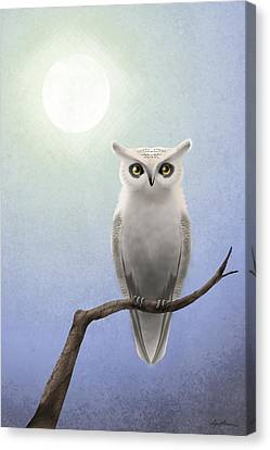 White Birds Canvas Print - White Owl by April Moen