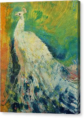 Peafowl Canvas Print - White Peacock by Michael Creese
