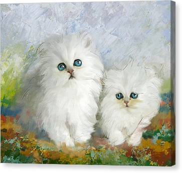 White Persian Kittens  Canvas Print by Catf