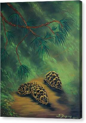 White Pine  And Cones Canvas Print by Sharon Duguay