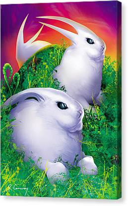 White Rabbits Canvas Print by Robert Conway