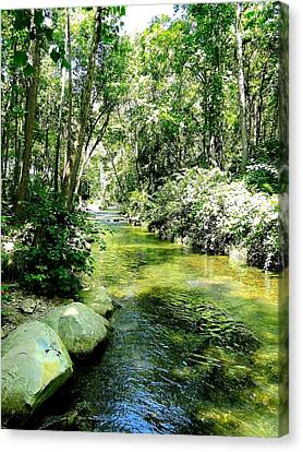 White River Basin Canvas Print by Cindy Croal