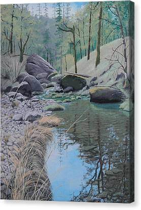 White Rock Creek Canvas Print